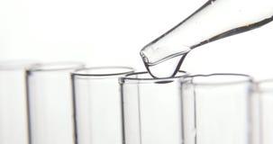实验室试验,吸移管滴下透明化学制品入试管 股票视频