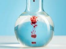 实验室玻璃器皿和红色液体里面在白色 免版税库存照片