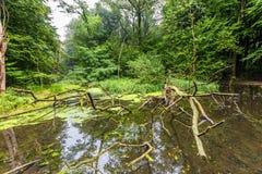 实验水力设施和流动模型遗骸  库存图片