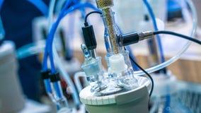 实验设备在科学实验室 免版税库存照片