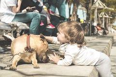 宠爱在街道的小女孩一条狗 图库摄影