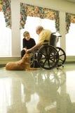 宠爱妇女的狗年长人 免版税库存照片