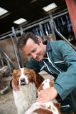 宠爱猎犬的交配动物者 免版税库存图片