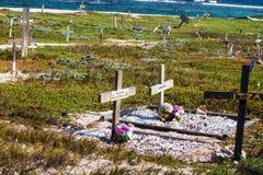 宠物公墓在阿鲁巴 库存照片
