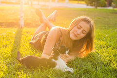 宠物和所有者概念-使用与在草的一只猫的美丽的女孩 图库摄影