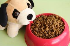 宠物和食物 库存图片