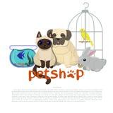 宠物店与金丝雀、哈巴狗、鱼、兔子和暹罗猫传染媒介图象的商标模板 库存例证