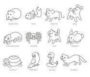 宠物店,设置了宠物的类型 免版税图库摄影