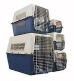 宠物旅行的载体集合与在被隔绝的黑色的一只宠物 库存图片