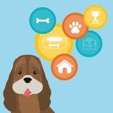 宠物照管设计 库存照片