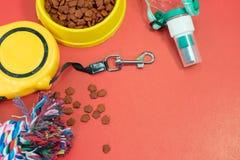 宠物辅助部件概念 碗用食物,自动皮带 免版税库存照片