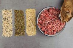 宠物食品的自然未加工的成份在灰色背景 库存图片