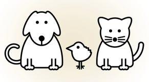 宠物 免版税库存图片