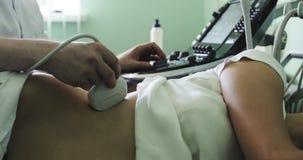 审查妇女` s权利肾脏的男性医生使用超声波扫描器 影视素材