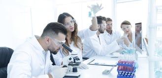 审查殷勤地有蓝色流体的科学家吸移管在实验室 库存图片