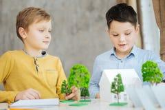 审查环境城市项目的宜人的青春期前的男孩 免版税库存照片