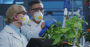 审查绿色植物的科学家 股票录像