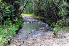 审阅水和泥的atv足迹的部分 免版税库存图片