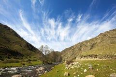 审阅绿色山谷的山河在与美丽的白色云彩的一个夏天晴天在天空,阿尔泰 免版税库存图片