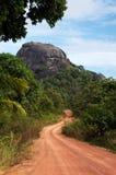 审阅绿色的多灰尘的路上色了导致一个大黑岩石的灌木 免版税图库摄影
