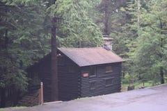 客舱在森林 库存照片