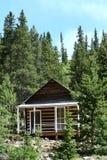 客舱小的森林 免版税库存照片