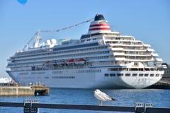 客船和海鸟风景在横滨日本港  库存图片