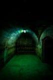 黑室入口,堡垒13,罗马尼亚 库存照片