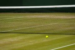 室内网球Wimbledon 库存图片