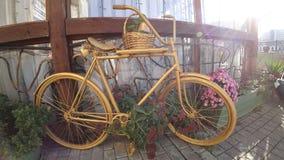 室内装饰的美丽的自行车 库存图片