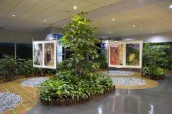 室内设计想法-机场候诊室庭院 库存图片