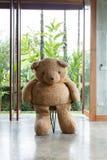 室内设计,玩偶熊坐椅子家具 免版税库存图片