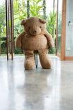 室内设计,玩偶熊坐椅子家具 库存照片