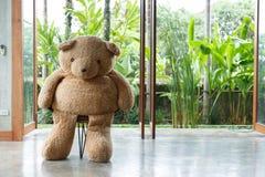 室内设计,玩偶熊坐椅子家具 免版税库存照片