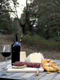 室外吃用面包、乳酪、香肠和红葡萄酒 免版税库存照片