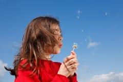 室外吹的蒲公英的女孩 免版税库存照片
