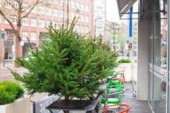 室外咖啡馆在圣诞节时间的欧洲城市 免版税图库摄影