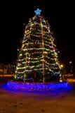 室外圣诞树显示在晚上 免版税库存图片