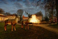 室外圣诞节场面夜视图Raudondvaris立陶宛 免版税库存图片