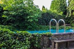 室外在地面住宅游泳池在有浴盆和许多绿色植物的后院 图库摄影