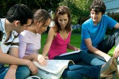 室外学习的少年 免版税库存图片