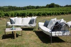 室外家具在有沙发和桌的葡萄园里在庭院里 图库摄影