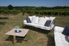 室外家具在有沙发和桌的葡萄园里在庭院里 免版税库存照片