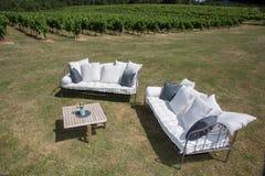 室外家具在有沙发和桌的葡萄园里在庭院里 库存图片