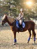 室外幼小俏丽的深色的骑乘马 免版税图库摄影