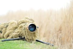 室外摄影师野生生物 免版税库存照片