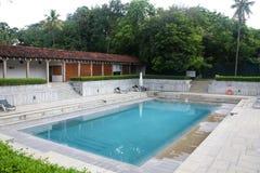 室外池游泳 库存图片