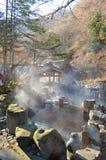 室外温泉, Onsen在日本在秋天 库存图片