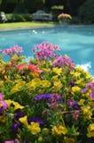 室外游泳池在一个热的夏日 图库摄影