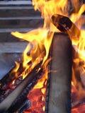 室外的火 免版税库存图片